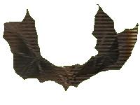 vampire bat shadow hearts